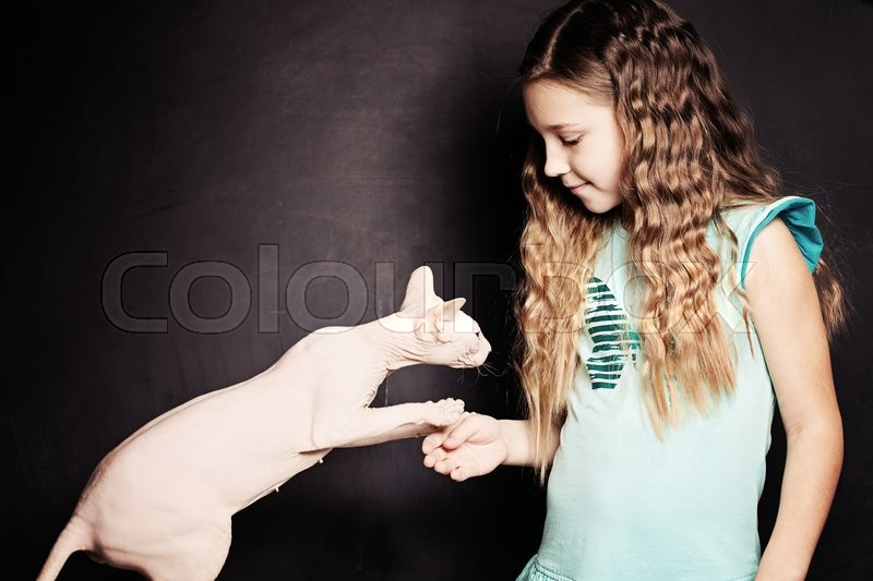 Stock image of 'Meet the Cat. Cild Girl and Pet'