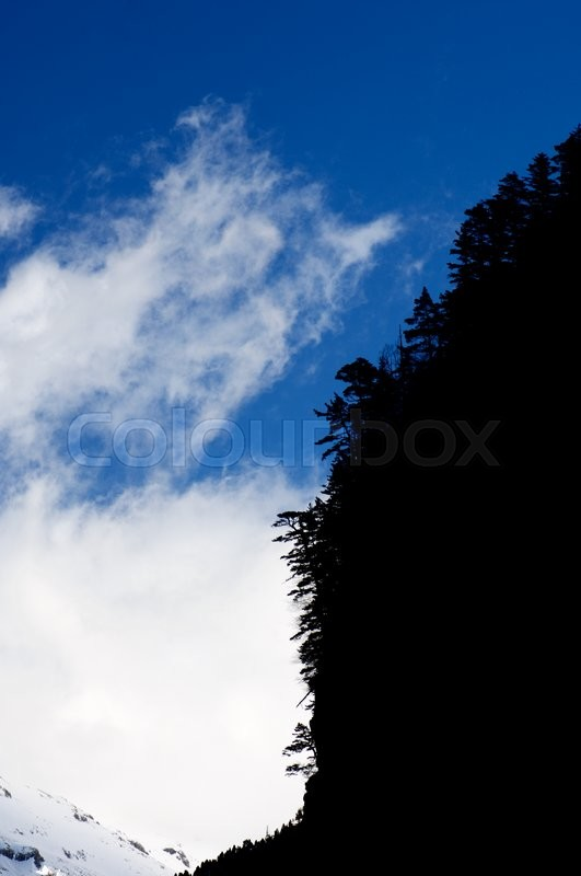 Stock image of 'Forest and clouds in Pyrenees, Spain.'