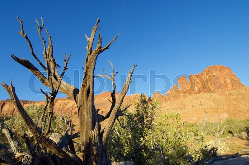 Stock image of 'rocky cliff in the area known as Indian Creek, near Canyonlands, Moab, Utah, Usa'