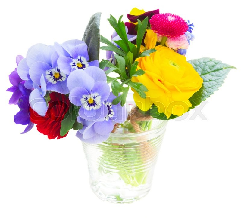 Stock image of 'Bunch of violets, pansies, daisies and ranunculus isolated on white background'