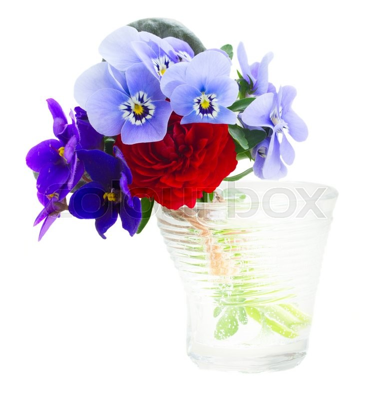 Stock image of 'Posy of violets, pansies and ranunculus in glass isolated on white background'