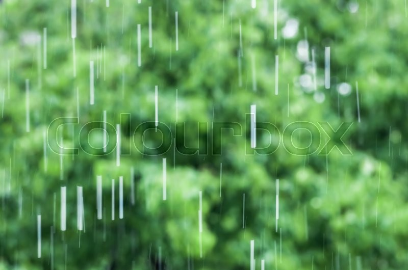 Stock image of 'drop of rain on a background of green spaces'