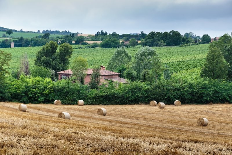 Stock image of 'Typical Tuscan farmhouse in Italy'