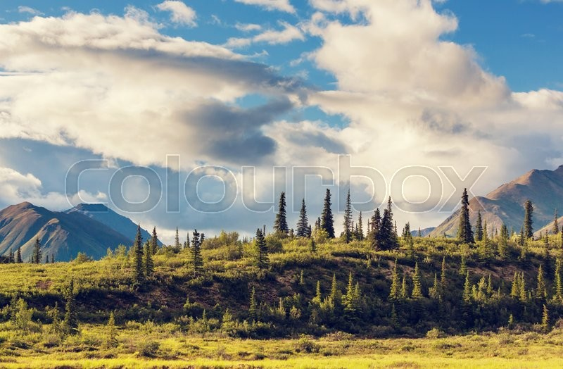 Stock image of 'Mountains of Alaska in summer'