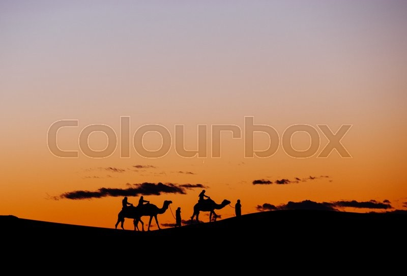 Stock image of 'A small group of tourists during a camel trekking at sunset through the Erg Chebbi Dunes. Merzouga, Morocco, Africa.'