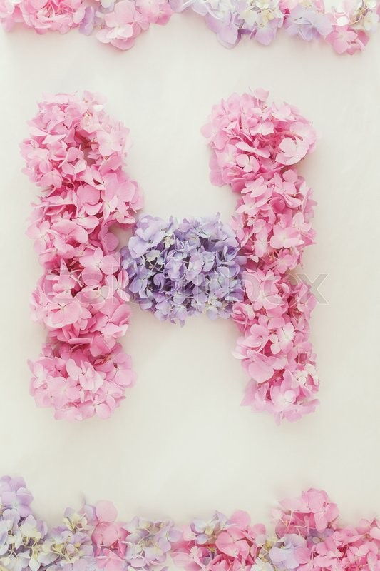 Stock image of 'Hydrangea floral background. Flowers arranged into the shape of the letter H on rustic background.'