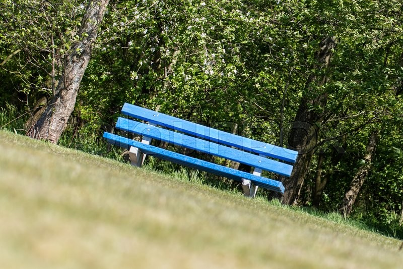 Stock image of 'Blue bench in a public park, the Netherlands'