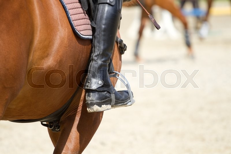 Stock image of 'Dressage horse rides in the arena'
