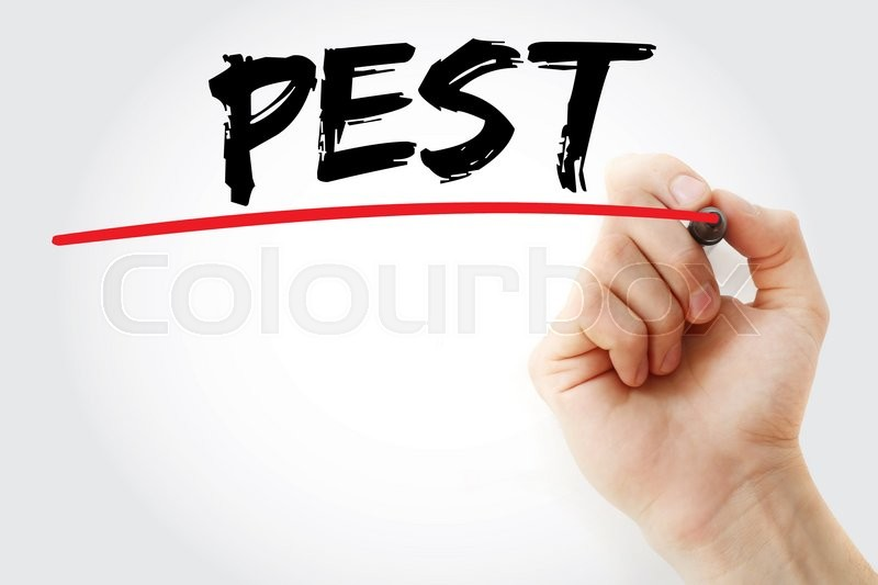 Stock image of 'Hand writing PEST analysis with marker, business concept'