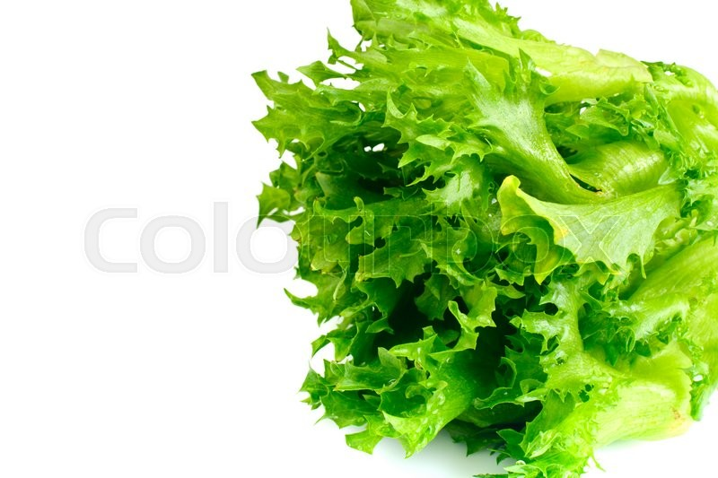 Stock image of 'Green Fresh Lettuce Studio Photo'
