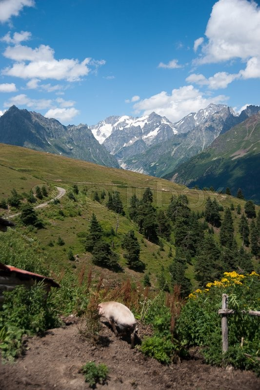 Stock image of 'Nature and travel in Georgia svaneti region mountain'