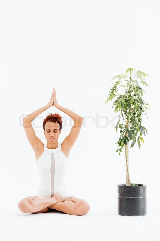 Stock image of 'young woman practicing lotus yoga pose near small tree in pot'