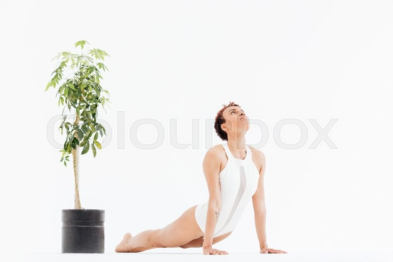 Stock image of 'Curly african american young woman doing stretching yoga exercises on the floor near small tree in pot over white background'
