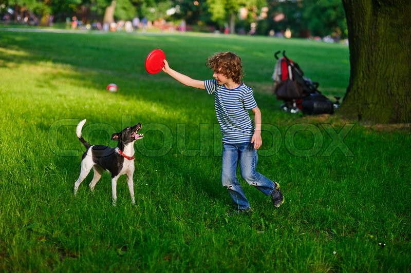 Stock image of 'The little fellow trains a dog in park. He holds a red disk in hand. The dog has opened a mouth and has flicked out tongue language. She was tired.'