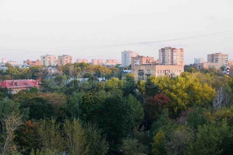 Stock image of 'colorful autumn trees in the city during the day'