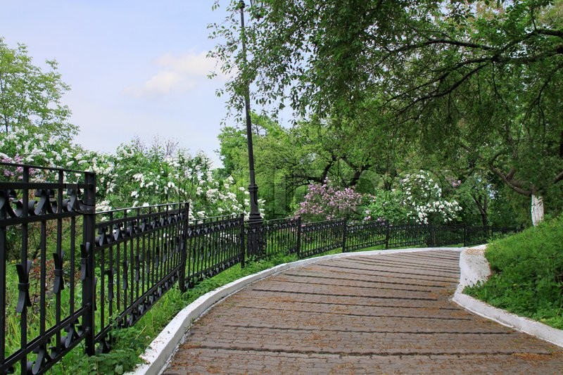 Stock image of 'Alley of Kievo-Pecherska Lavra park'