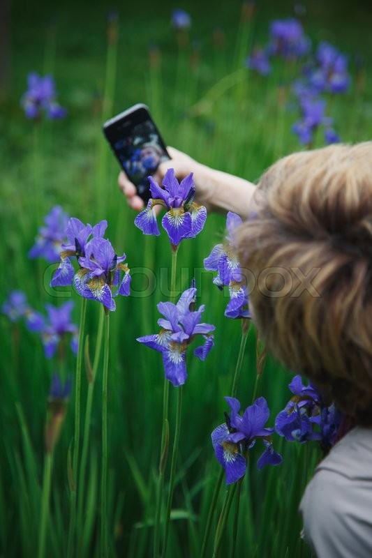 Stock image of 'woman photographs herself in the flowers of iris on the phone in autumn day'