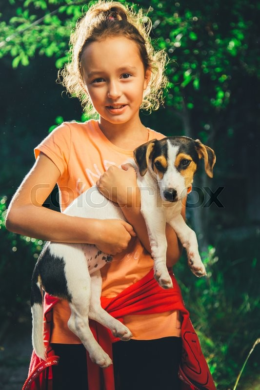 Stock image of 'girl holding a small dog breed Jack Russell Terrier smiles and looks at the camera on a summer day'