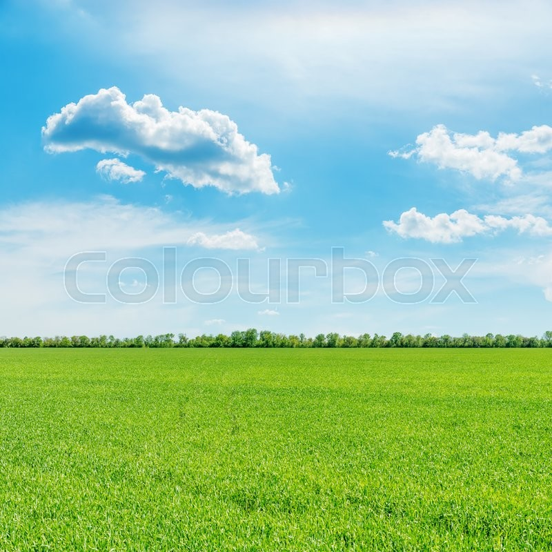 Stock image of 'Green field and clouds in blue sky'