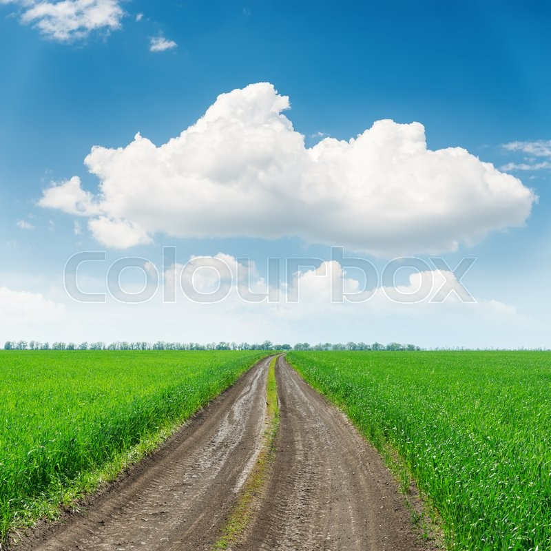 Stock image of 'Road in green grass fields and big cloud over it'