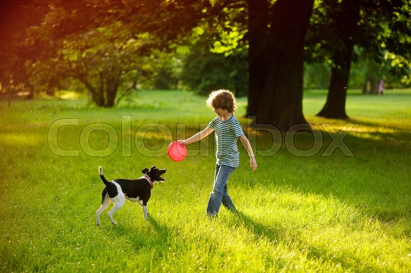 Stock image of 'The little fellow trains a dog in park. Boy of 8-9 years is holding a red disc. His pet attentively looks at the owner. The doggy has raised a tail up. She likes game. On a background big trees.'
