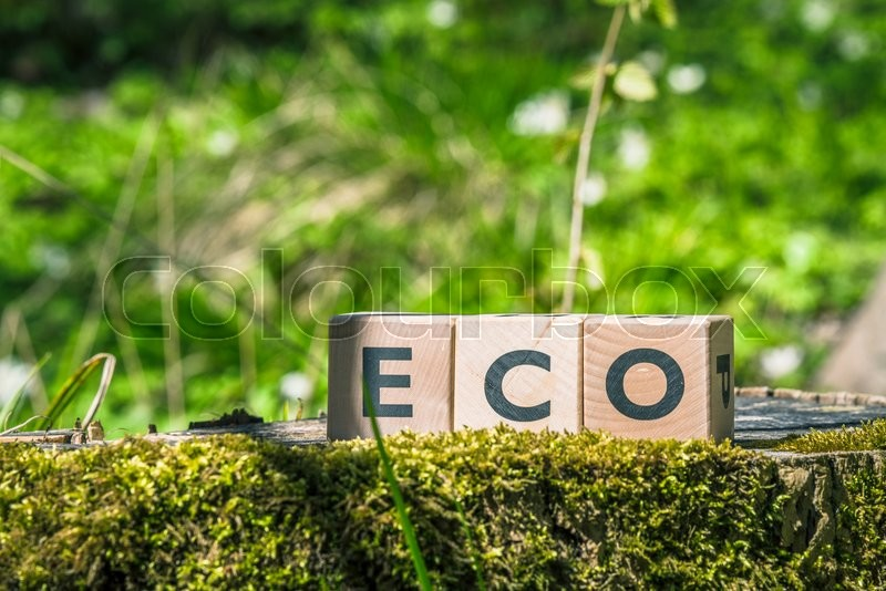 Stock image of 'Eco sign in a green forest in the spring'