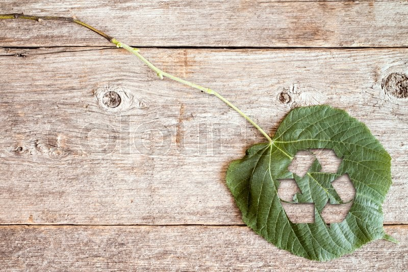 Stock image of 'Green leaf with a cutout of a recycle symbol on a wooden background'