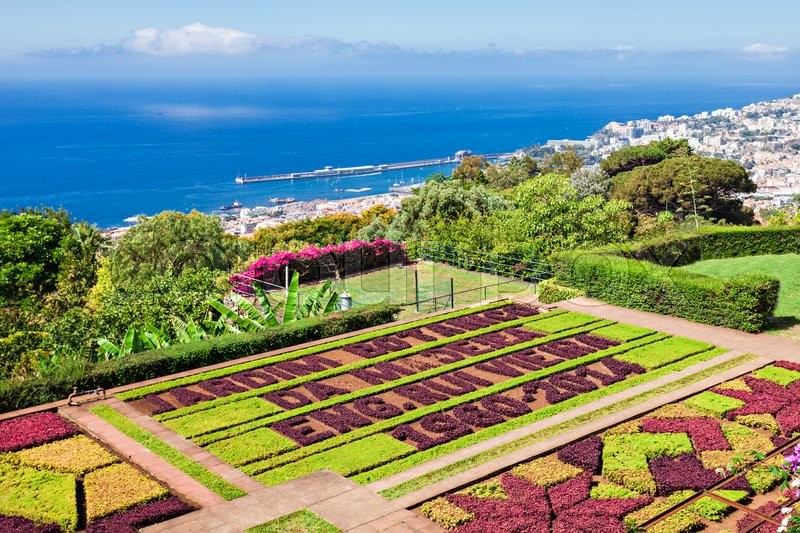 Editorial image of 'FUNCHAL, MADEIRA - JuLY 09: Funchal Botanical Gardens on July 09, 2014 in Madeira island, Portugal.'