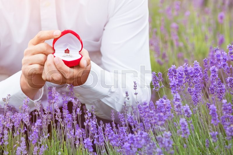 Stock image of 'Elegant young man proposing with an engagement ring at lavender field with the focus on the ring'