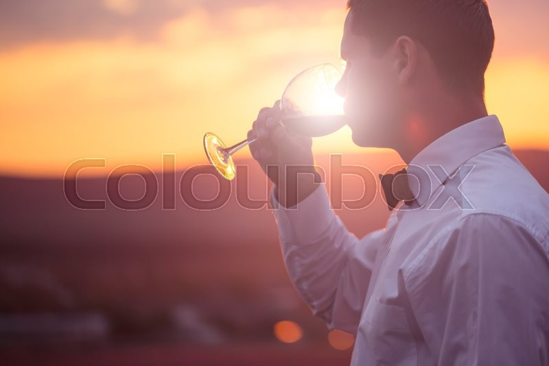 Stock image of 'Elegant young guy drinking wine on lavender field at sunset time'