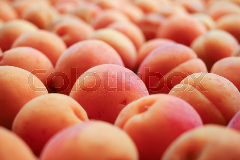Stock image of 'Lots of fresh and ripe apricots'