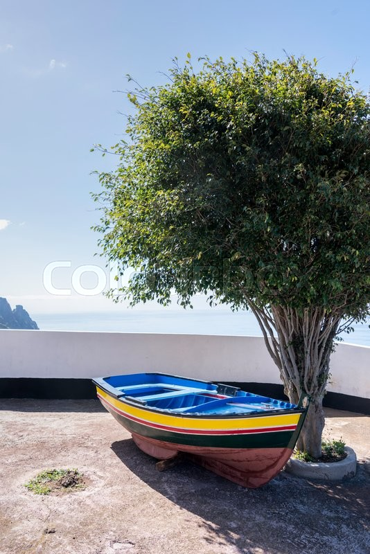 Stock image of 'olive tree and blue yellow and red painted boat at ocean coastline on madeira island'