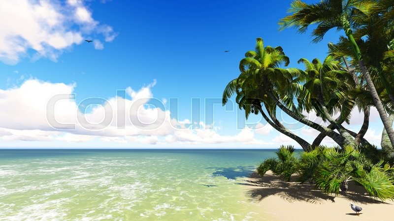 Stock image of 'Untouched tropical sand beach blue sea and blue sky 3D rendering'