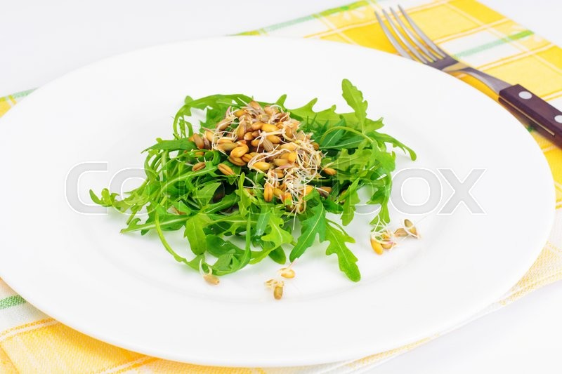 Stock image of 'Arugula Salad and Rye Seedlings Studio Photo'