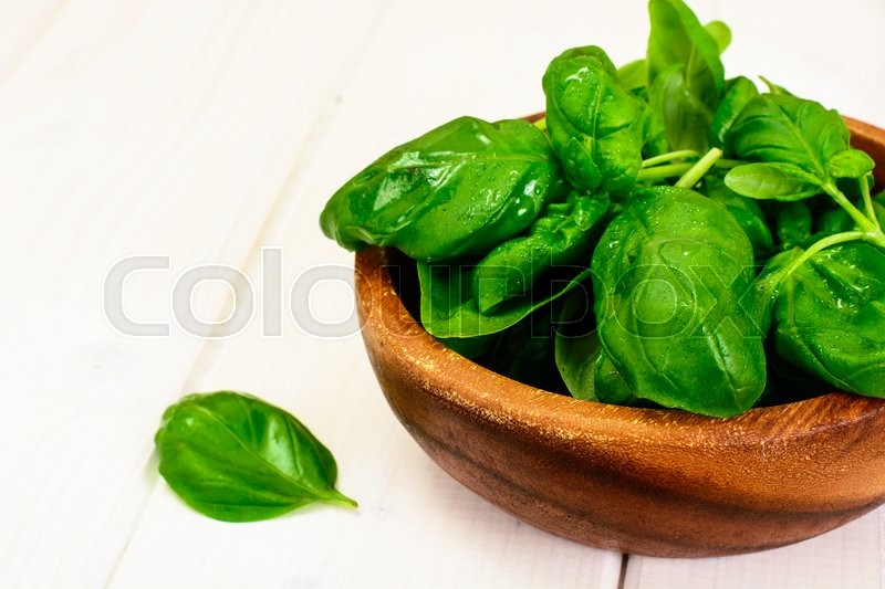 Stock image of 'Basil on White Woody Background Studio Photo'