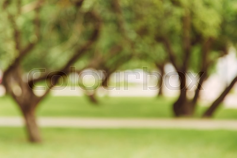 Stock image of 'Blurred abstract green background of park alley, copy space, lens blur'