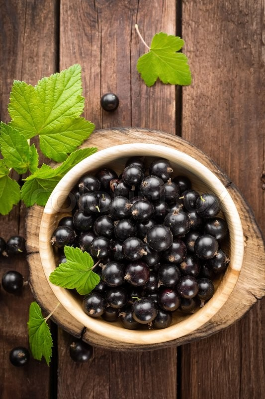 Stock image of 'Black currant'