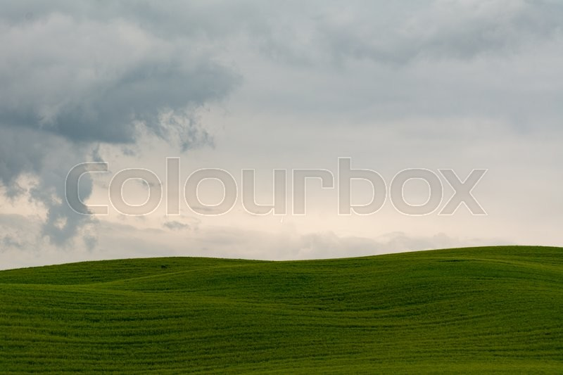 Stock image of 'Tuscany hill in Val d'Orcia on a cloudy day'