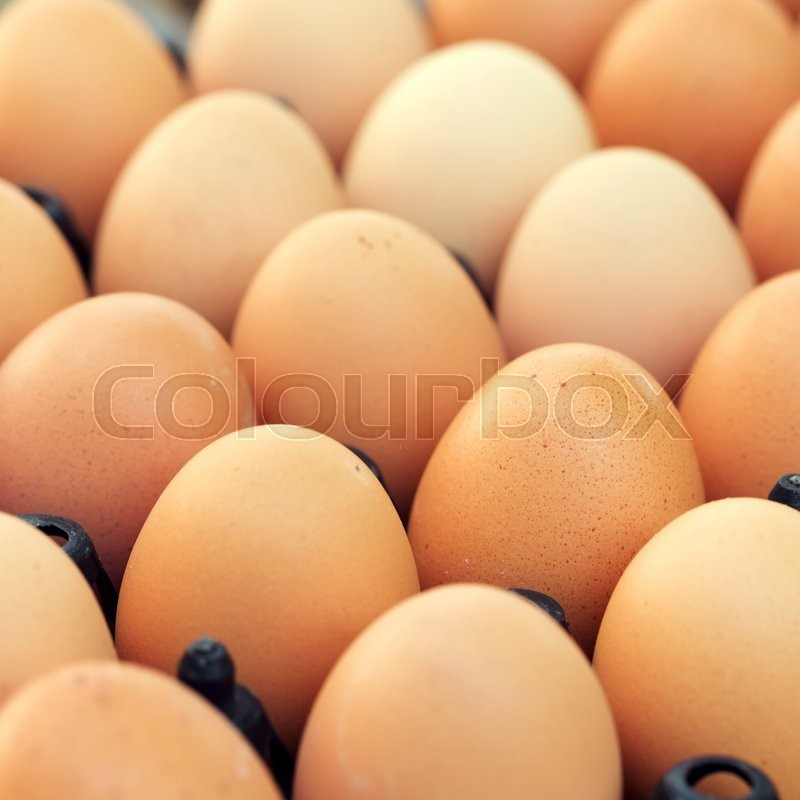 Stock image of 'Fresh organic eggs from chicken farm agriculture for sale at the market'