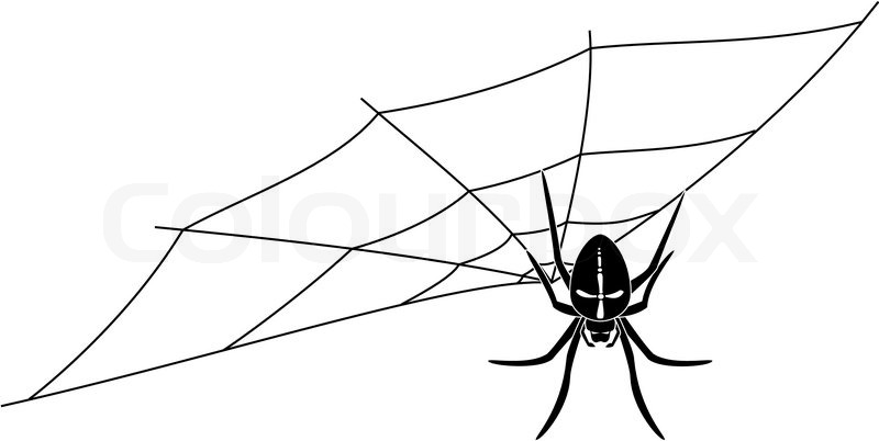 Upside down spider waiting on his web | Stock Vector ...