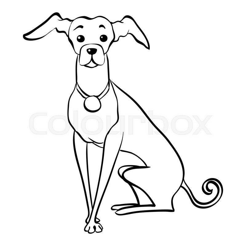 sketch funny dog italian greyhound breed sitting hand drawing
