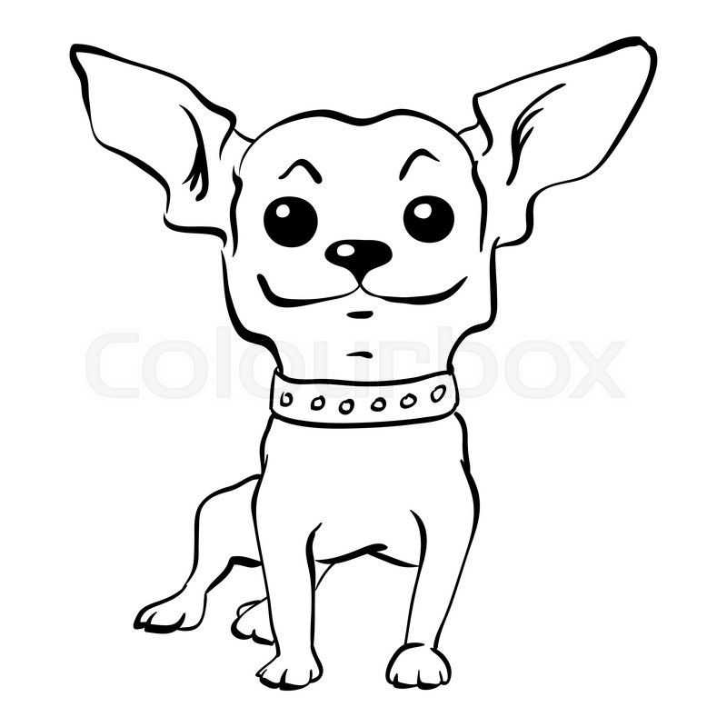 sketch funny dog short haired chihuahua breed sitting hand drawing