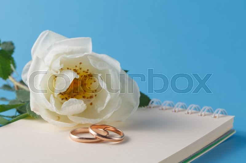 Stock image of 'Wedding rings and Wild rose'