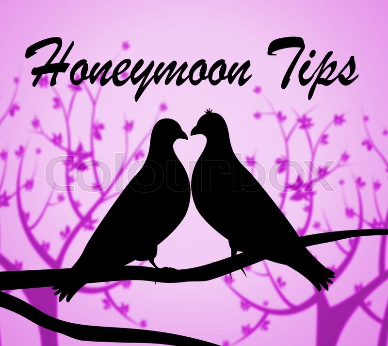 Stock image of 'Honeymoon Tips Representing Pointers Travel And Honeymoons'