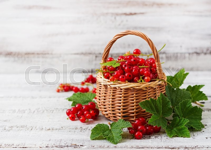 Stock image of 'Basket with Red currant with leaves on a light background.'