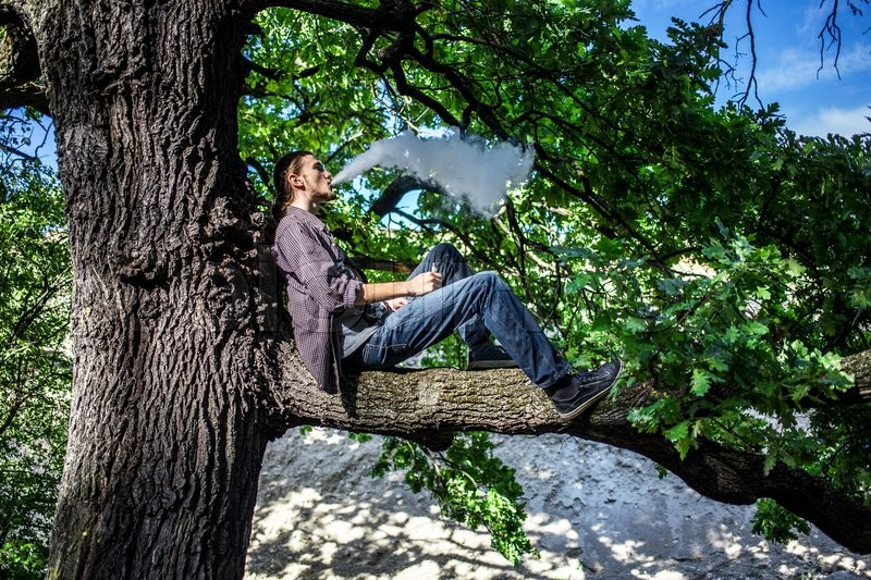 Stock image of 'Young man vaping electronic cigarette and sitting on the tree. Daylight summer shot.'