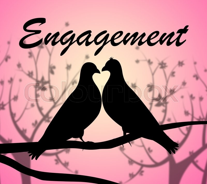 Stock image of 'Engagement Doves Representing Love Birds And Relationships'