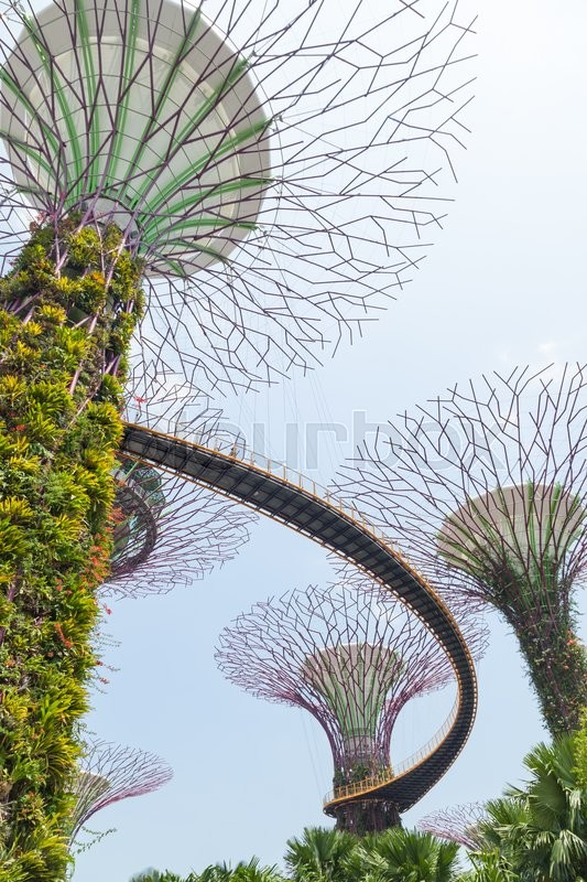Stock image of 'SINGAPORE - APRIL 10, 2016: Supertree Grooves over the blue sky. Supertree Grooves located in Garden by the Bay, Singapore.'