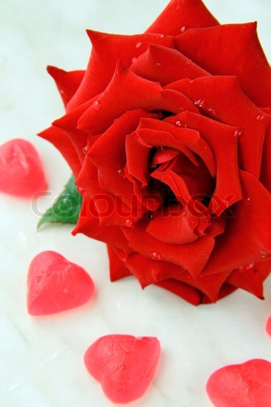 Rose Symbol Of Love Choice Image Definition Of Symbolism In Literature