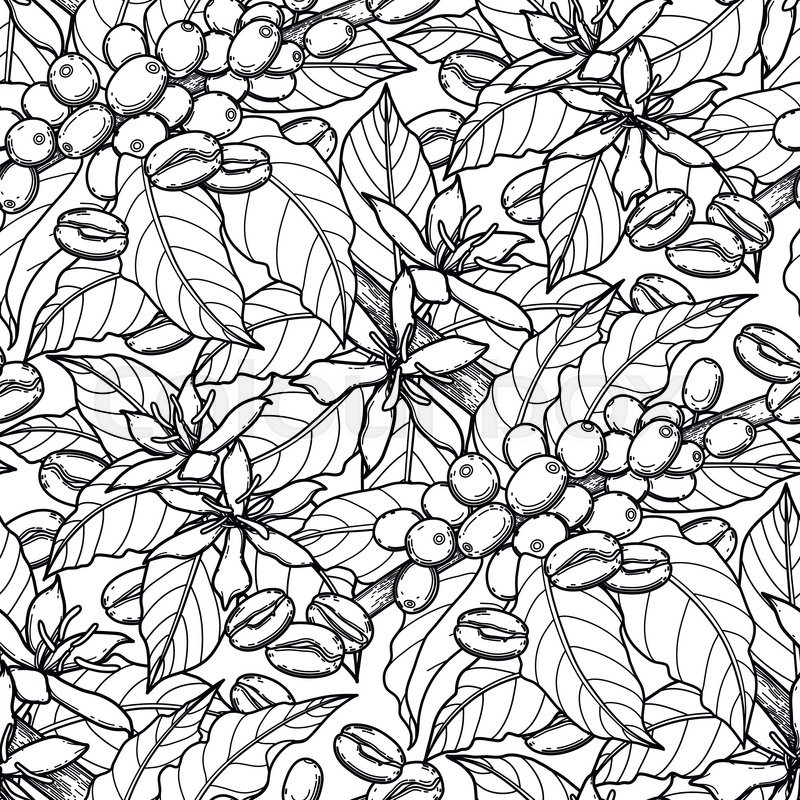 Graphic coffee beans, leaves and flowers. Vector seamless pattern ...